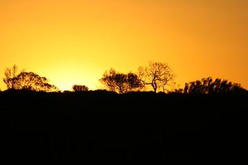 Sonneuntergang beim Uluru