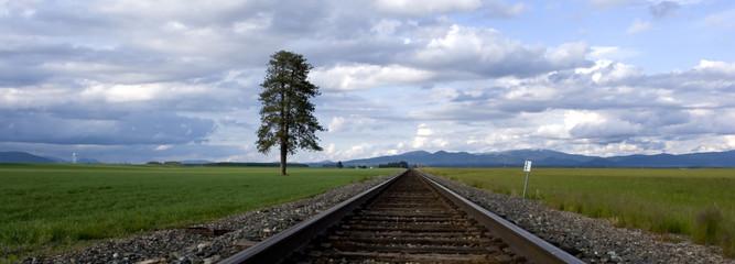 Wall Murals Railroad Panorama of train tracks through a farm field.