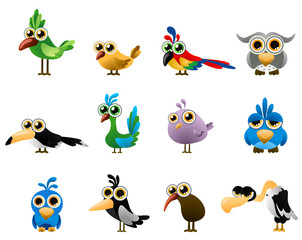 bird vector - cartoon series 3