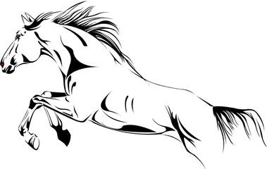 jumping horse vector illustration