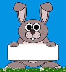 Bunny Rabbit Cartoon - Holding Isolated CopySpace Board