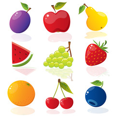 Set of different vector fruits