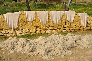 Animal skins and wool drying outside, Fes Morocco