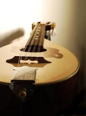 Mandolin Closeup
