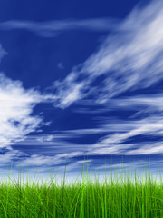 3d grass with perfect details and blue sky and clouds