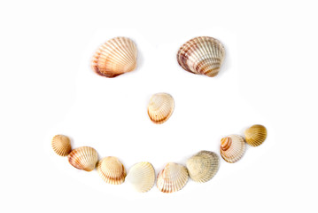 smile from various color shells isolated on white