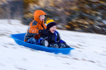 Excited Boys on Sled Ride