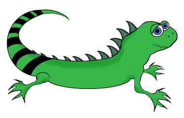 Iguana Cartoon - Isolated On White