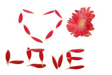 petal's heart