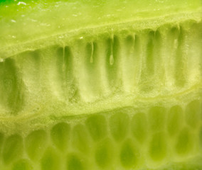 Abstraction background - cucumber