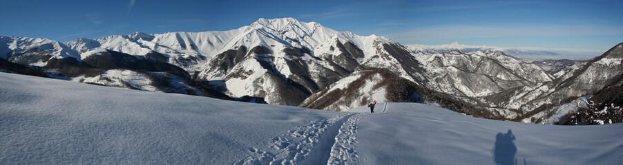 Panorama sur les Alpes enneigées