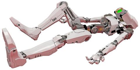 Slim Robot, Horizontal