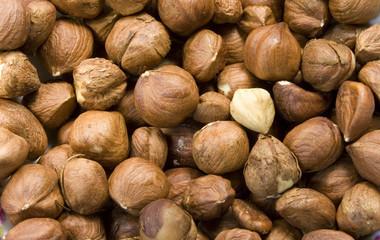 Heap of hazelnut as a background