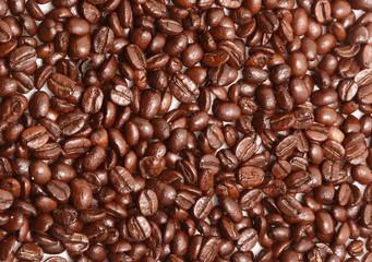 Fotobehang koffiebar Coffee beans