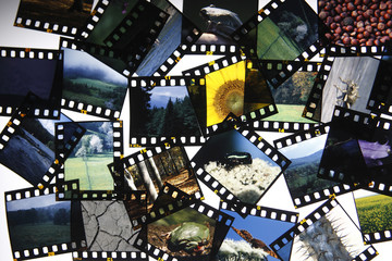 Cut up slide film