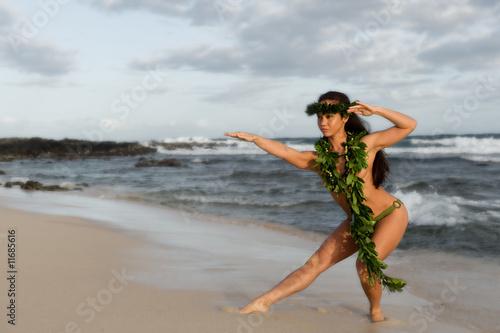 Topless hula dancer pics, nude dormgirls
