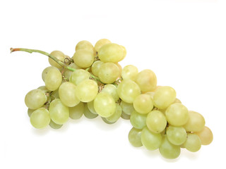 Bunch of grapes on white with clipping path.
