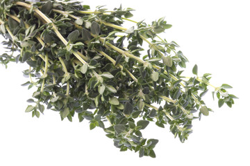 Thyme Macro Isolated