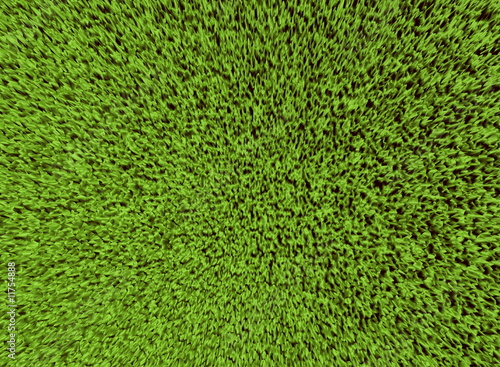 grass field from above. Above Grass Field Texture From Above S