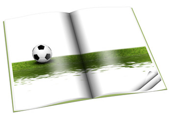 book with Soccer ball on green grass