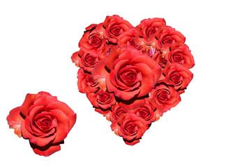Herz: Rote Rosen - Symbolbild Liebe/ Valentinstag/ heart
