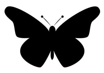 Schmetterling Vektor