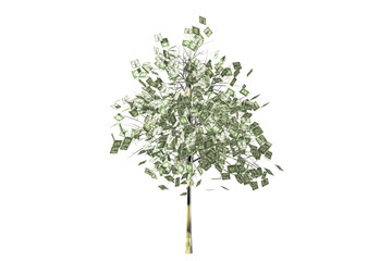 gold money tree with dollars leaf