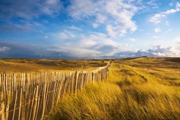 Photo sur Plexiglas Miel La côte sauvage (Quiberon, Bretagne)