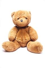 Teddy bear on white