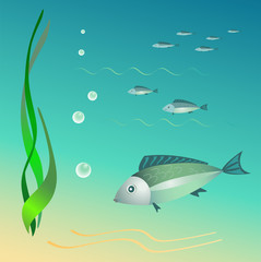 The undersea world. Fishes, seaweeds, bubbles.