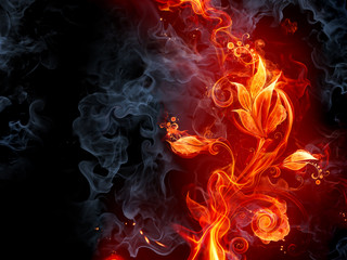 Foto op Canvas Vlam Fiery flower