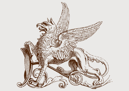 Detail coat of arms/ Griffin