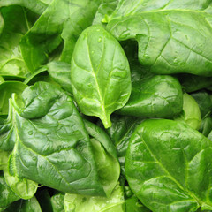 Spinach fresh leaves