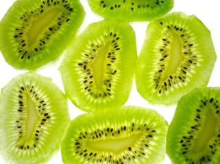 lobules of kiwi