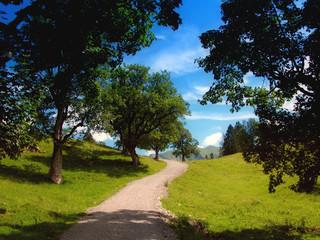 Einsamer Wanderweg