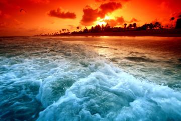 Aluminium Prints Blue ocean sunrice