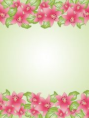 Spring background with lilium set #4