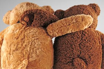 Beary good friends