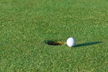Golf Tap In