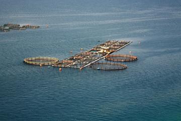 Fish farm Kefalonia