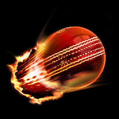 Cricket ball through fire