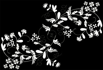 two white floral branches