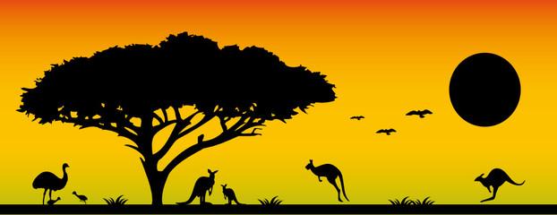 Die Schönheit Australiens