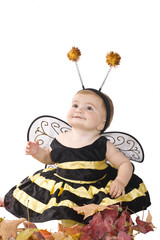 The girl in a  costume of a bee