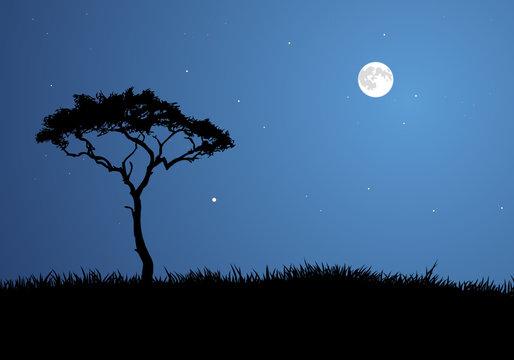 Moonlit Savannah