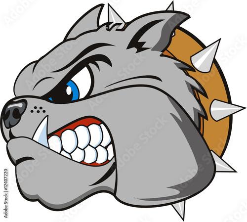 """vector Bulldog head very angry"" Stock image and royalty ..."