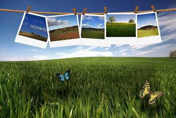 paysages sur paysage