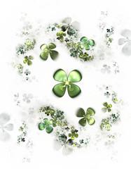 four leafed clovers on white,  shamrock