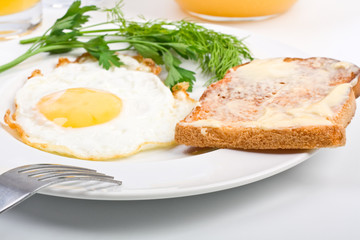 fried egg and a toast close-up on a white plate