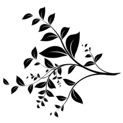 branche et feuillage - branch and leaves on white - vector